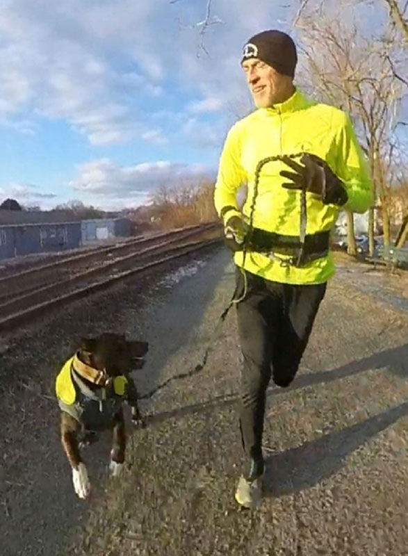 runner and dog jogging the trail