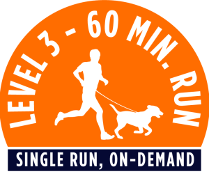 Level 1 - 60 minute running package - Single Run, On-Demand