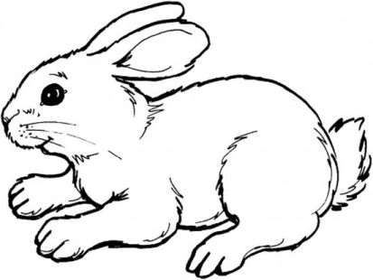 Bunny Coloring Pages Ideas