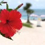 沖縄旅行計画!ルネッサンスリゾートオキナワはお得に長期滞在できる子連れにオススメなホテル