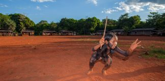 """""""Securing Indigenous guardianship of vital ecosystems"""": Q&A with Nia Tero CEO Peter Seligmann"""