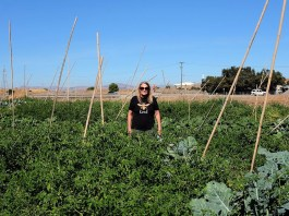 Reclaimed Water Could Be the Solution to Farming in a Drier Future