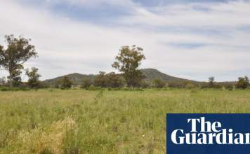 NSW government pays Shenhua $100m to cancel coalmine project