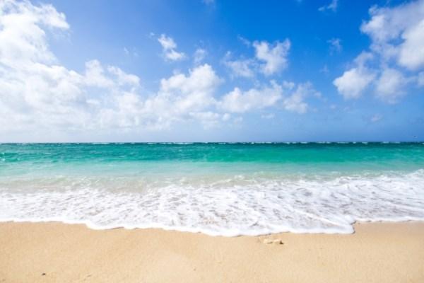 沖縄を車なしで楽しむにはどうする?旅行・観光のポイントを解説!