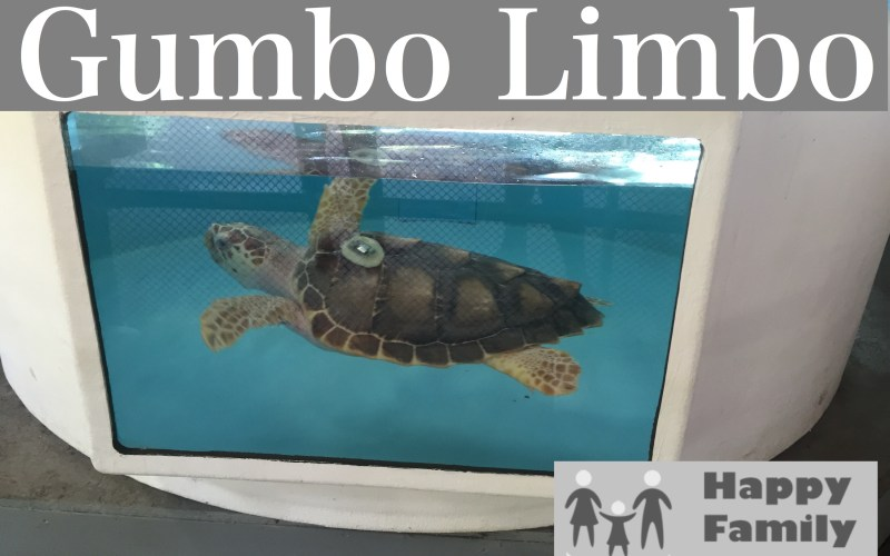 Gumbo Limbo by Happy Family Blog