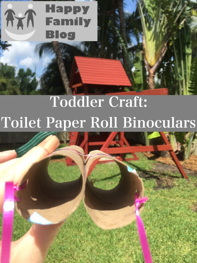 Toddler Crafts: Toilet Paper Binoculars by Happy Family Blog