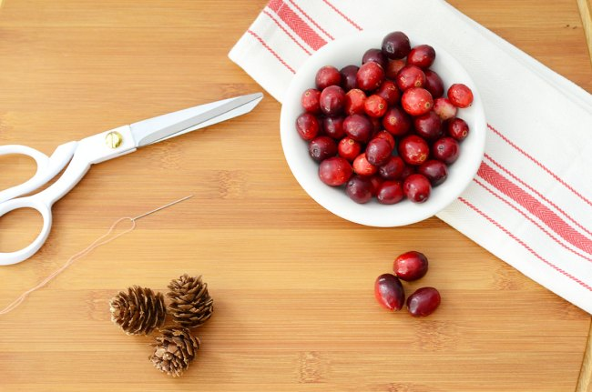 Cranberry Garland and Jewelry by Happy Family Bloga