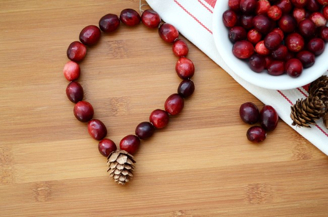 Cranberry Jewelry by Happy Family Blog