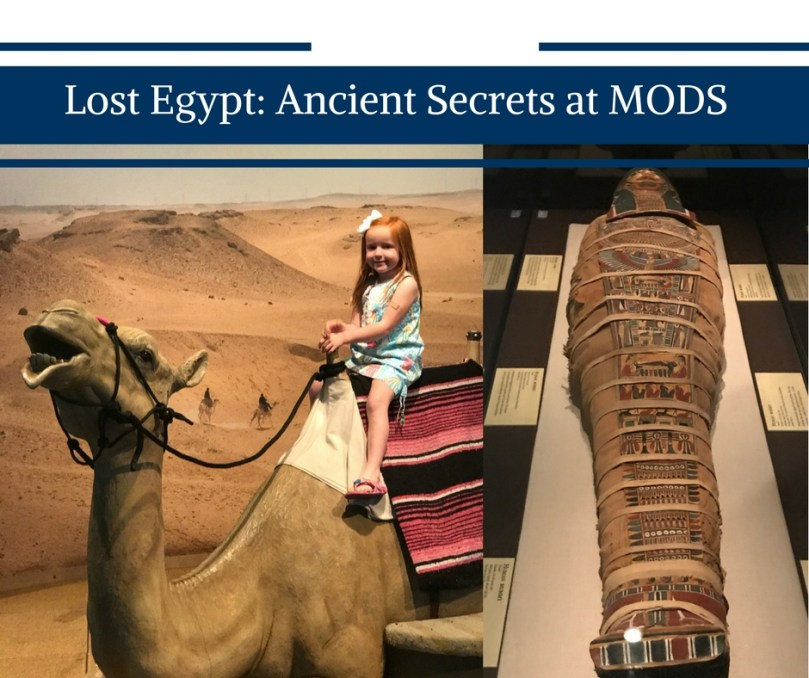 Lost Egypt: Ancient Secrets Exhibit Open at MODS by Happy Family Blog