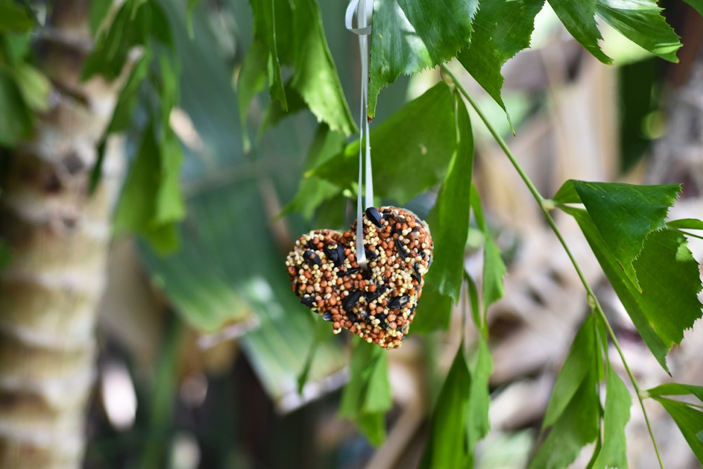 Recipe for Bird Seed Ornaments