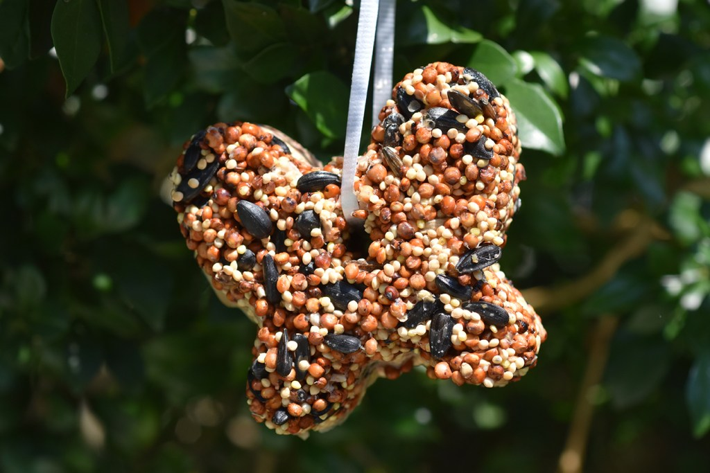 Bird Seed Ornaments with peanut butter