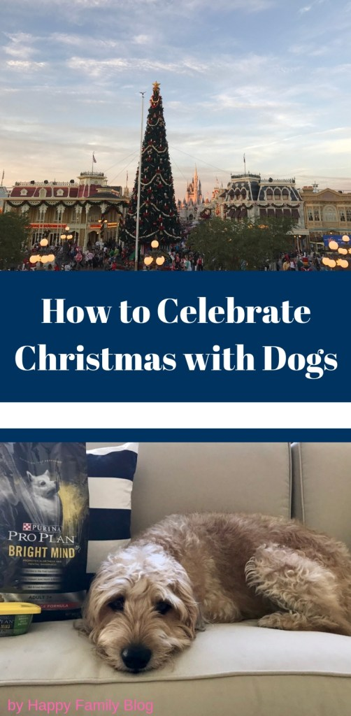 Christmas with Dogs; How to Celebrate by Happy Family Blog