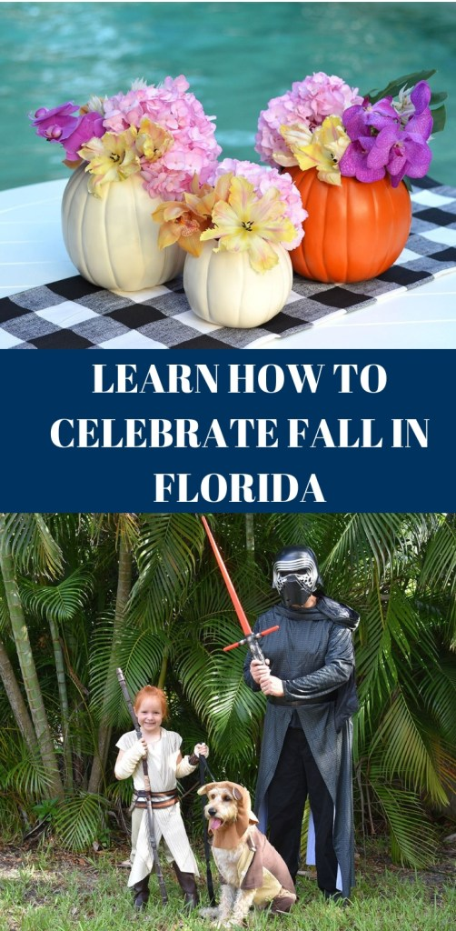 How to celebrate fall in Florida