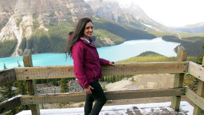 peyto lake observation deck