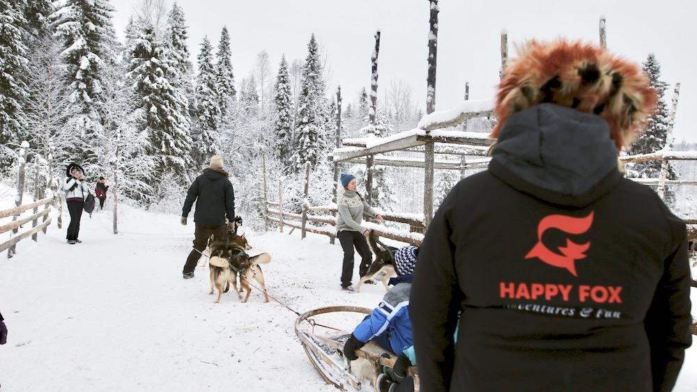 Happy-Fox-Arctic-Husky-Adventure-mama-fox