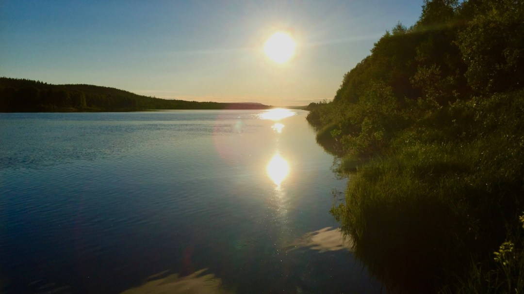 Happy-Fox-Arctic-Nighless-Night-Boat-Trip-Forest-Farm-Shore-p