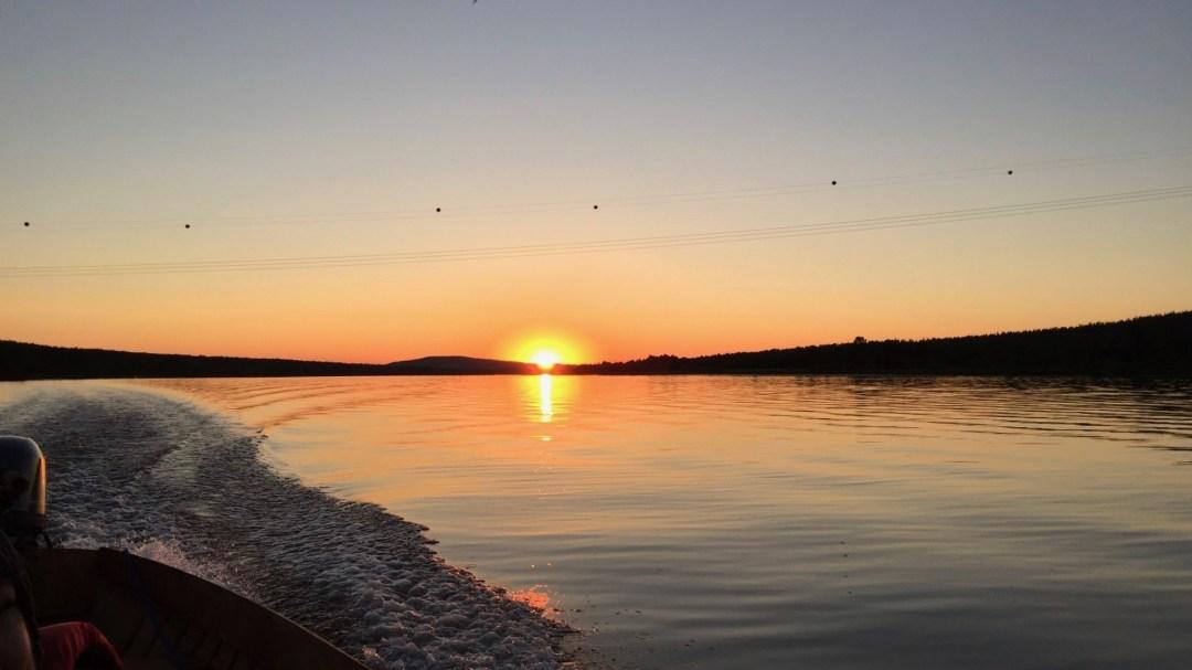 Happy-Fox-Arctic-Nighless-Night-Boat-Trip-Golden-Fox-mid-night-sun-p