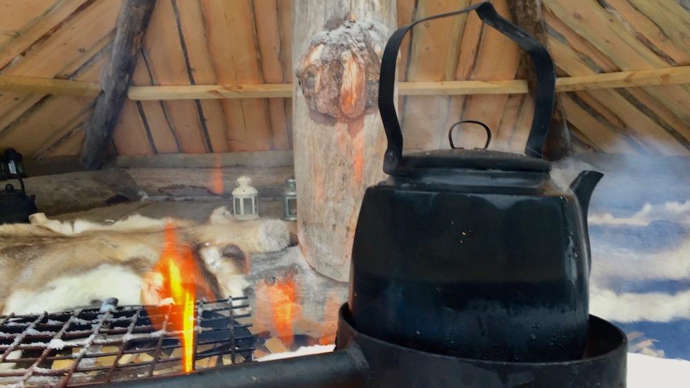 Happy-Fox-Arctic-Reindeer-Adventure-coffee-pot