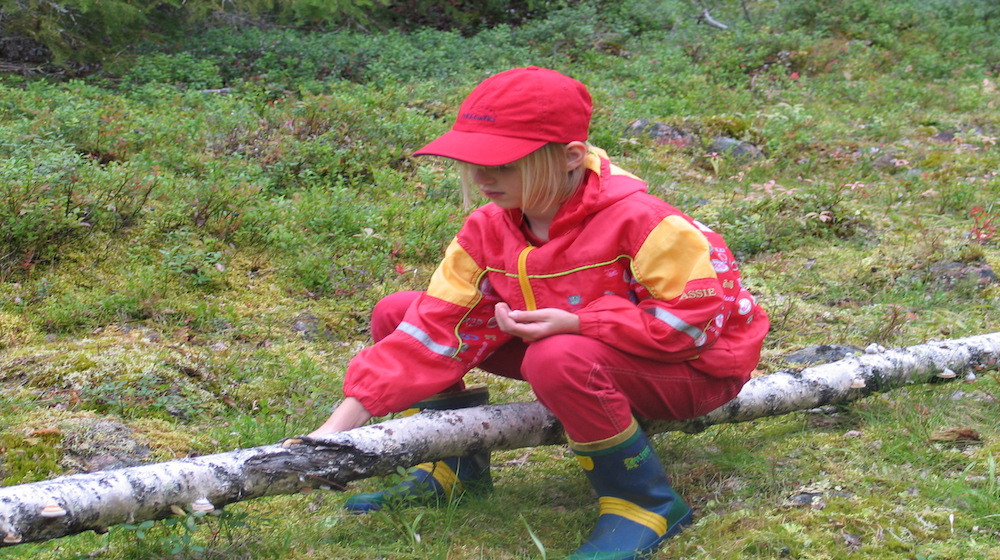 Happy-Fox-Arctic-Summer-Family-Day-Talvikki