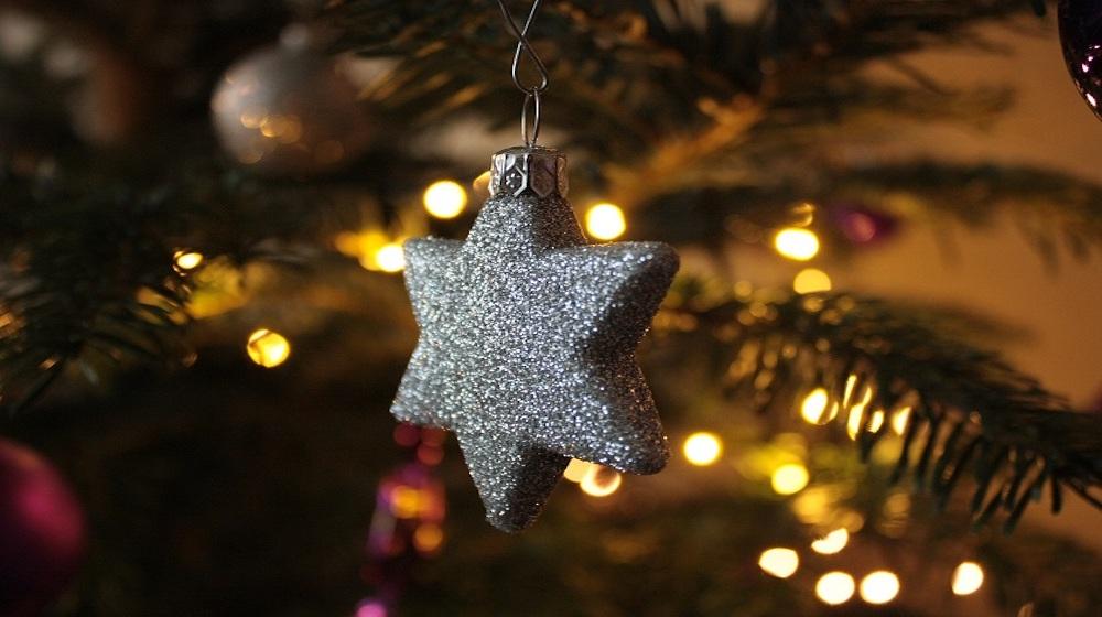 happy fox christmas is here christmas star