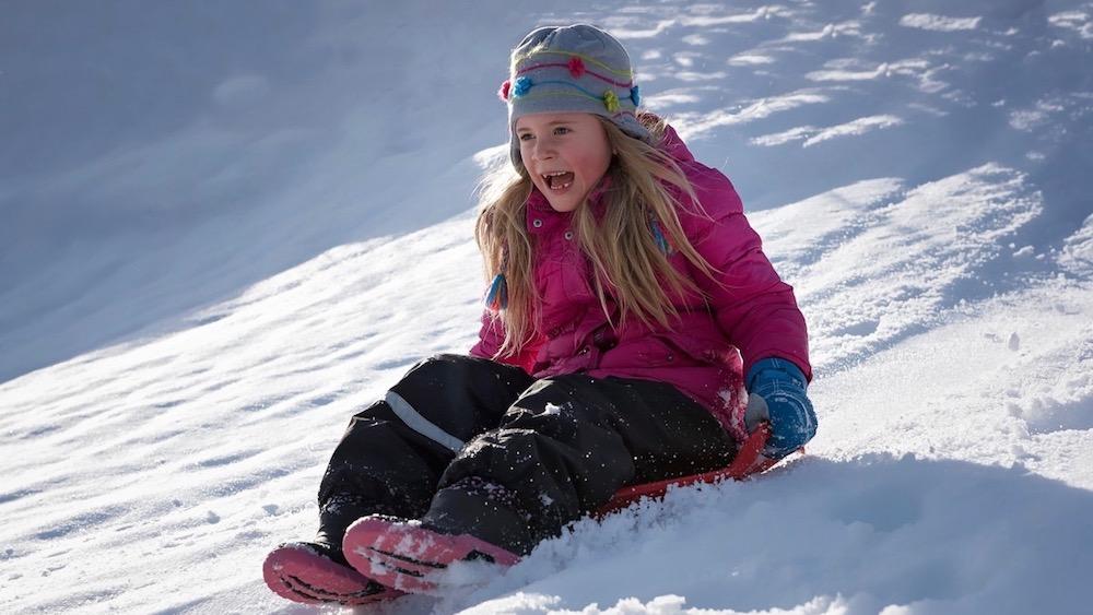 Happy-Fox-Fun-in-Winter-sledding