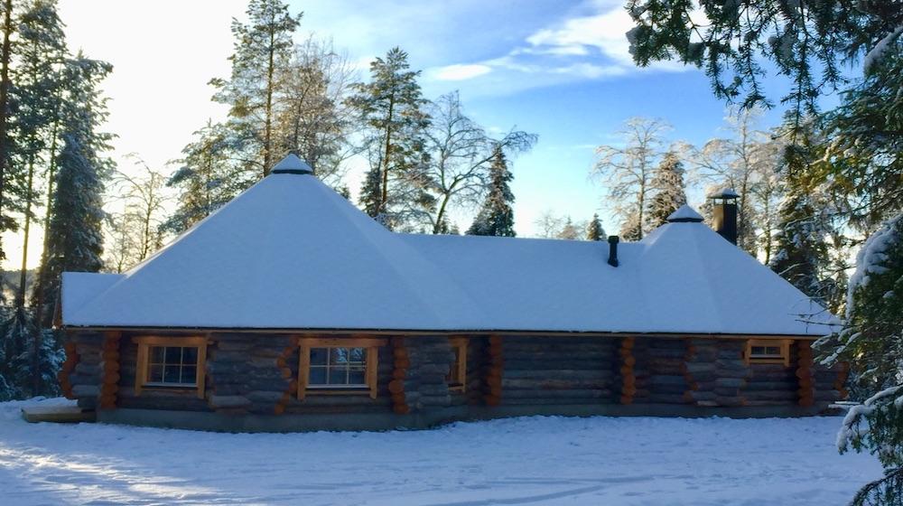 Forest Walk & Tradiotional Log Sauna, 3 hours