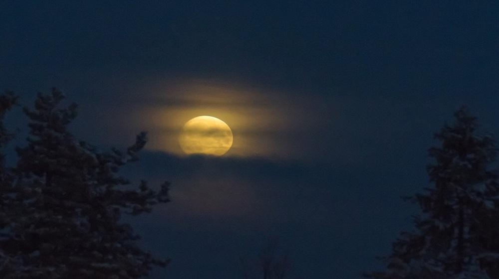 Happy-Fox-aurora-adventure-on-the-ounasjoki-river-moon