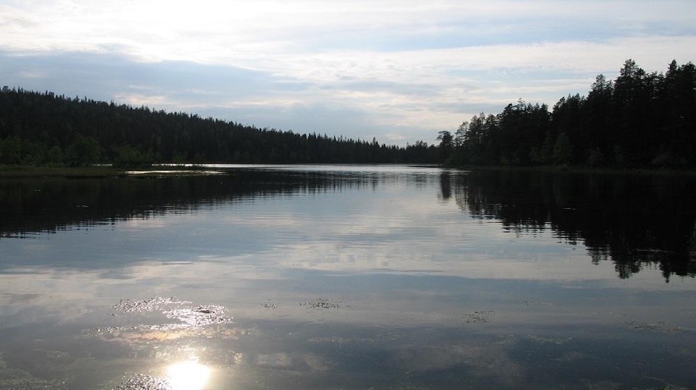 Happy-Fox-Boat-Trip-cloudy-river