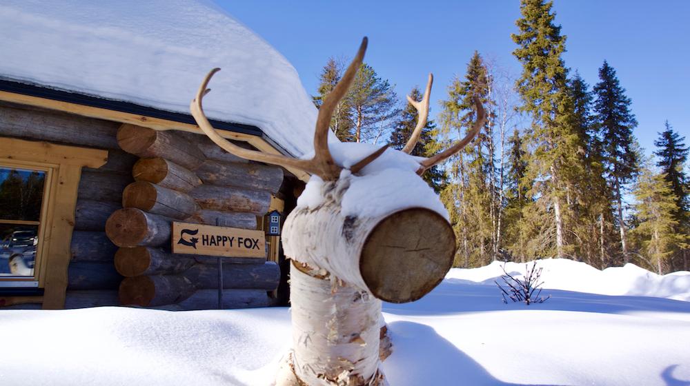 Happy-Fox-Arctic-Winter-Games-rudolf-reindeer-fox-cottage-s