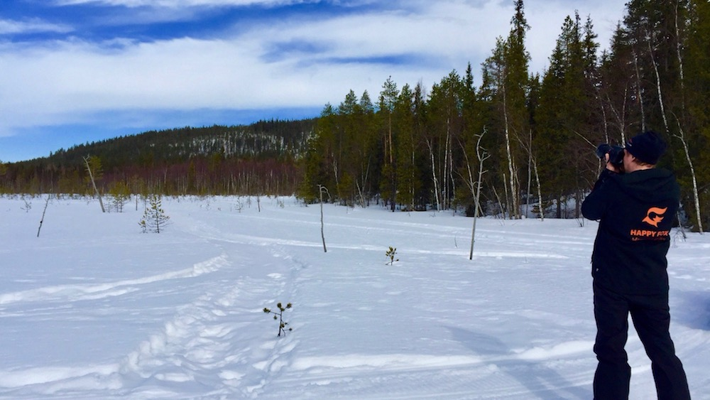 Happy-Fox-Arctic-Picnic-and-Forest-Walk-papa-p-fox