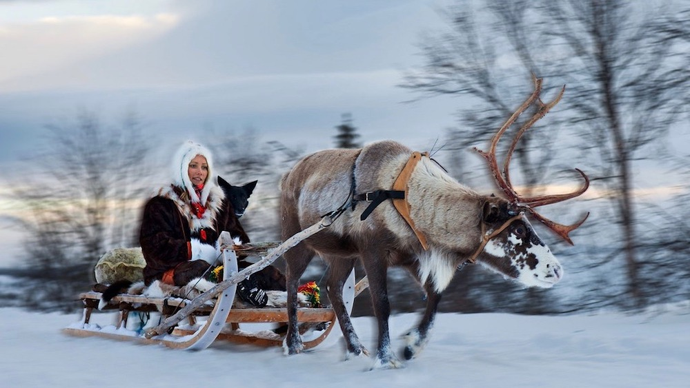 Happy-Fox-Arctic-Reindeer-Adventure-lady-on-reindeer-sled-p