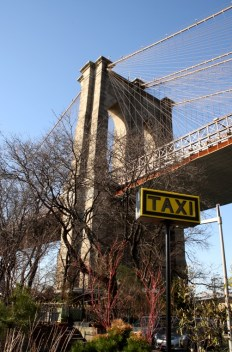 newyork14 486