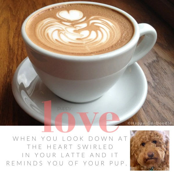Latte with heart swirled in foam in white coffee cup sitting on dark wood with title puppy love and quote and goldendoodle dog photo