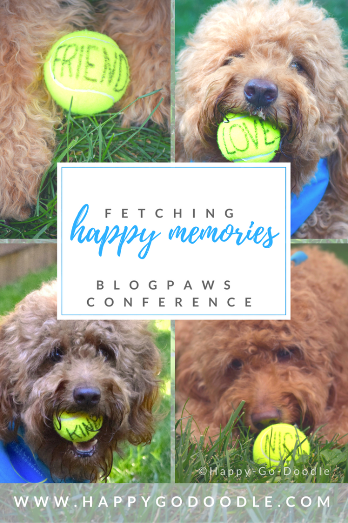 Collage of photos of red goldendoodle dog with yellow tennis balls with words printed on each ball and title fetching happy memories: blogpaws conference