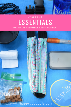 Whether going for a walk or a short outing with your dog, it's easier when you bring essentials such as poop sacks, water, treats, and more.