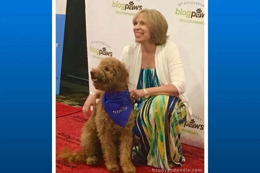 red goldendoodel dog and dog owner on the red carpet at blogpaws conference