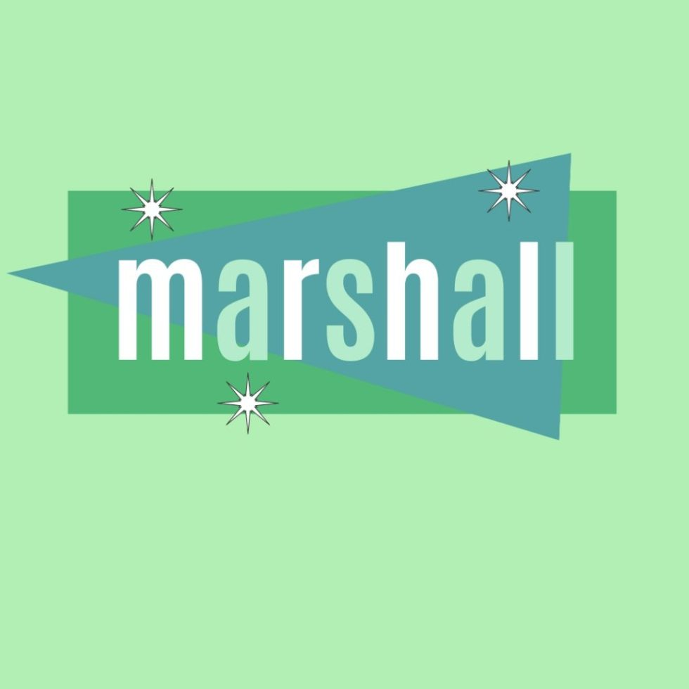 vintage name marshall as a human name for male dog