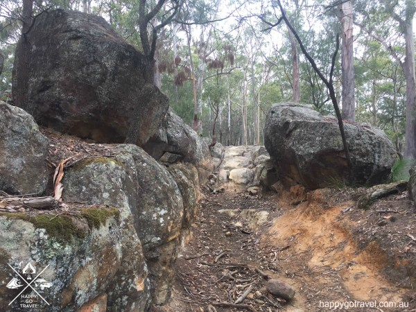 Cut Rock Watagans national park 4wd track