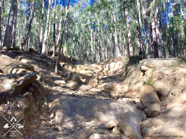 Wave Rock Rd, Watagans 4wd hard tracks