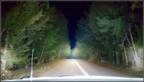 Toyota Fortuner Lighting up ta tunnel of trees road with Stedi led light bars.
