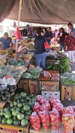vegetable-vendor-1
