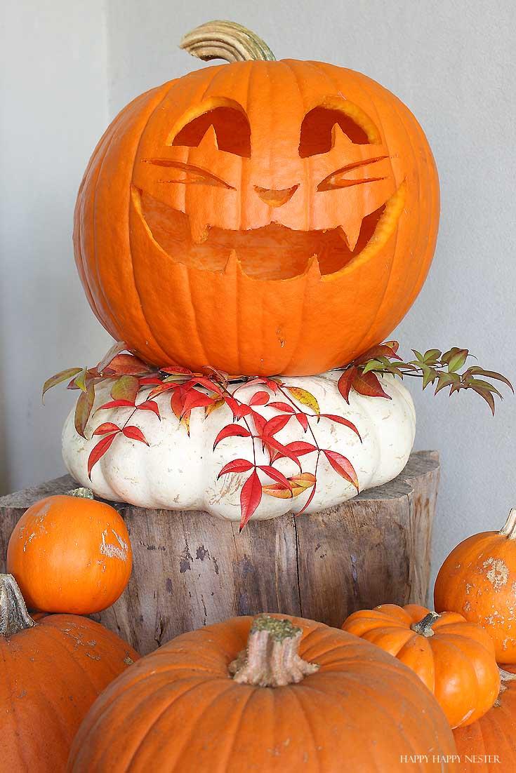 carved pumpkin on a white pumpkin