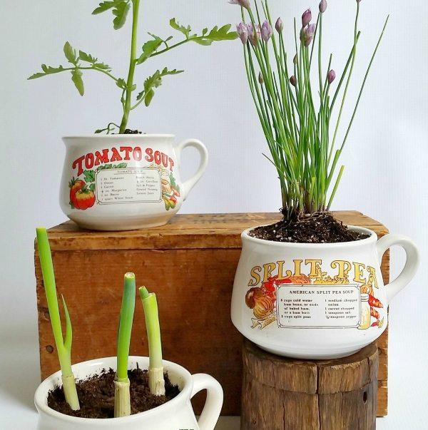 Gift Ideas Sadie_Seasongoods_Vintage_soup_bowl_garden_hostess_gift_plant