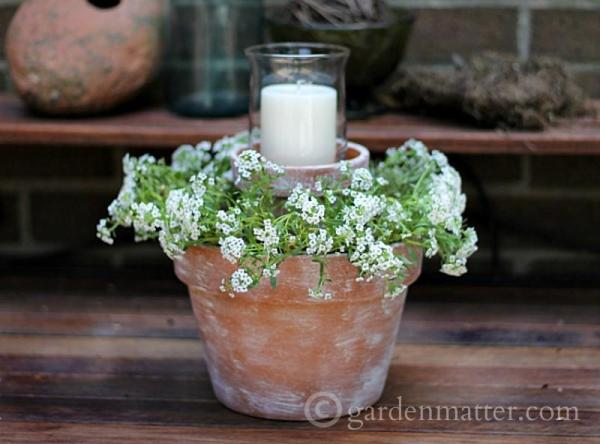 gift ideas Flower-Pot-Centerpiece-rec-gardenmatter.com_-800x592