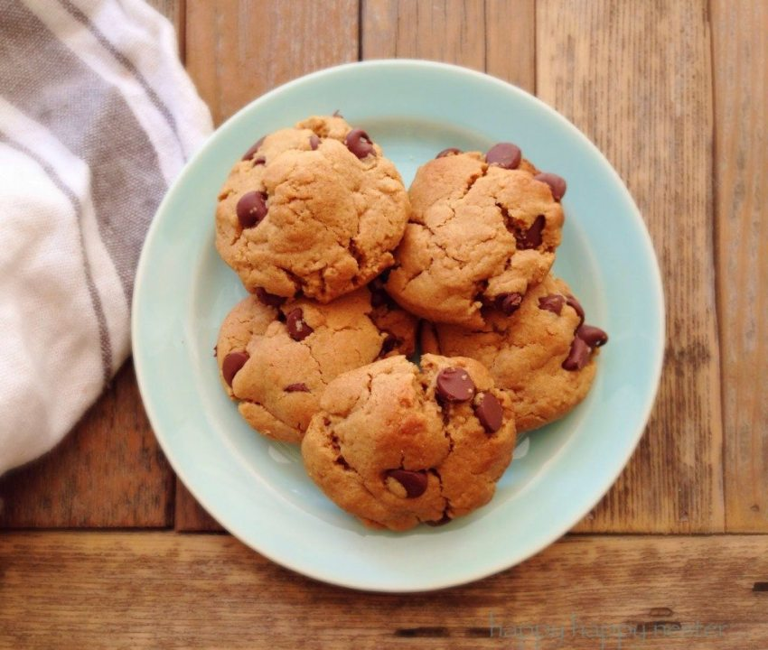 This gluten free Peanut Butter Chocolate Chip Recipe is addicting!