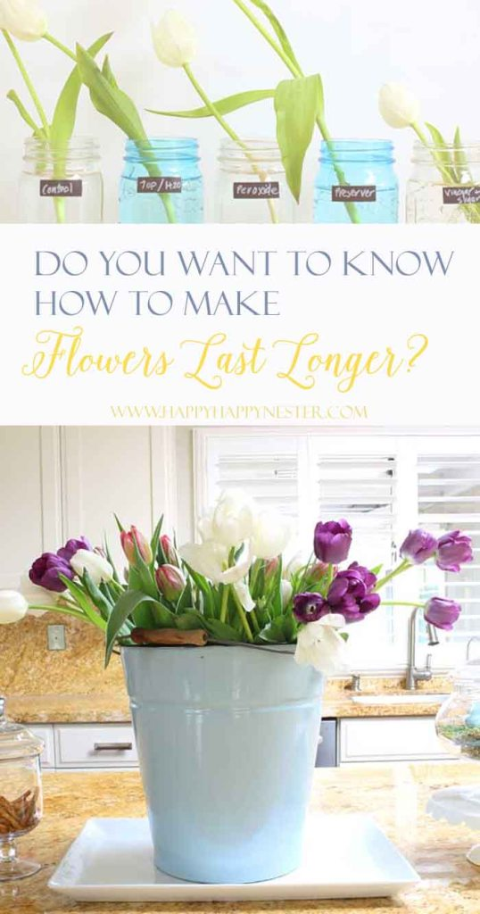 What makes flowers last longer. This is a tried and true week long test of 10 different solutions. The surprising results are something you'll want to try!