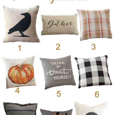 Add some Fall pillows to your home and brighten your room for the season. These splashes of Autumn with warm and delight any home decor.