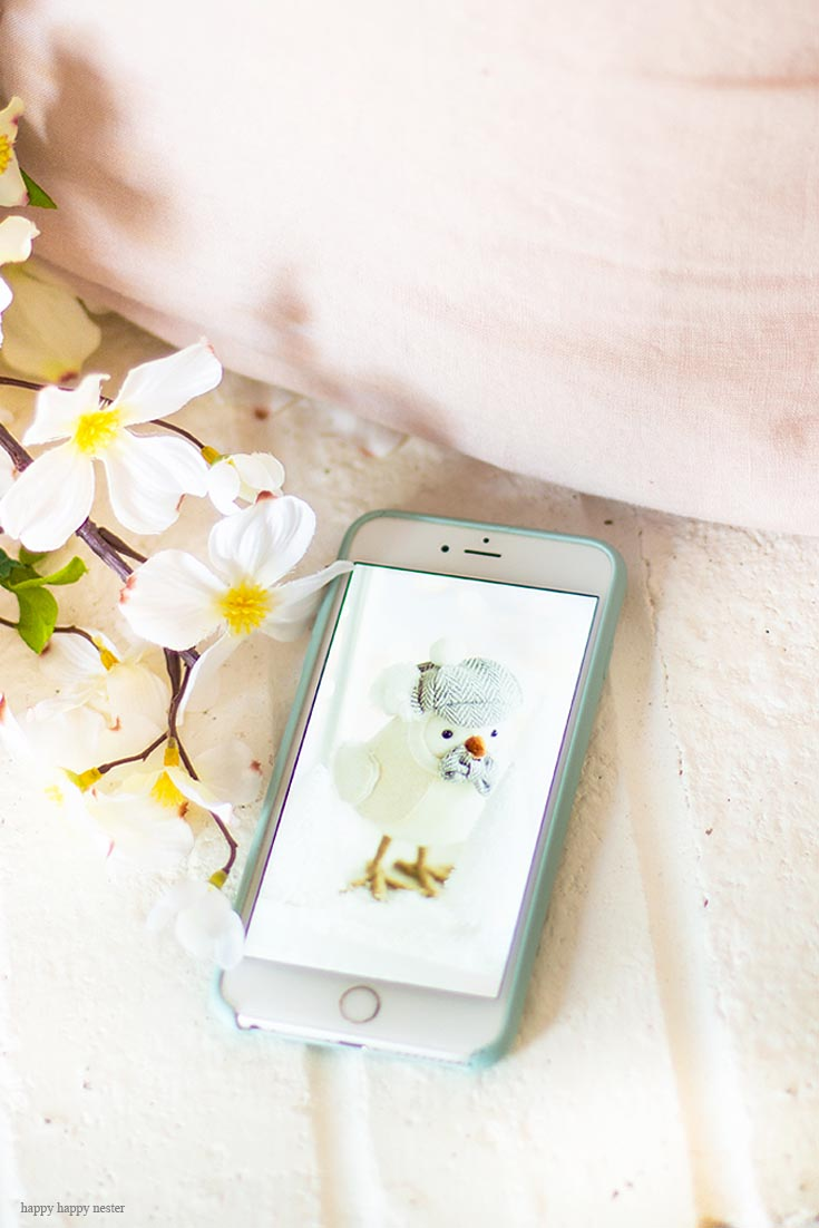 Get your Free Cute iPhone Wallpapers for free. We will be offering one every month