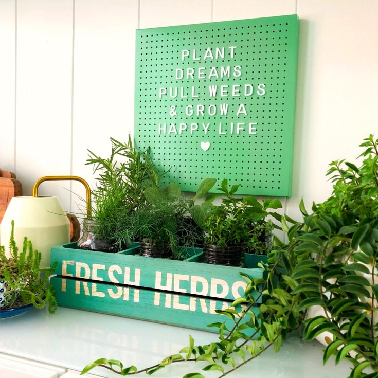 Easy And Inexpensive Kitchen Herb Garden. This Week, Our 3 Ingredient  Challenge Is To