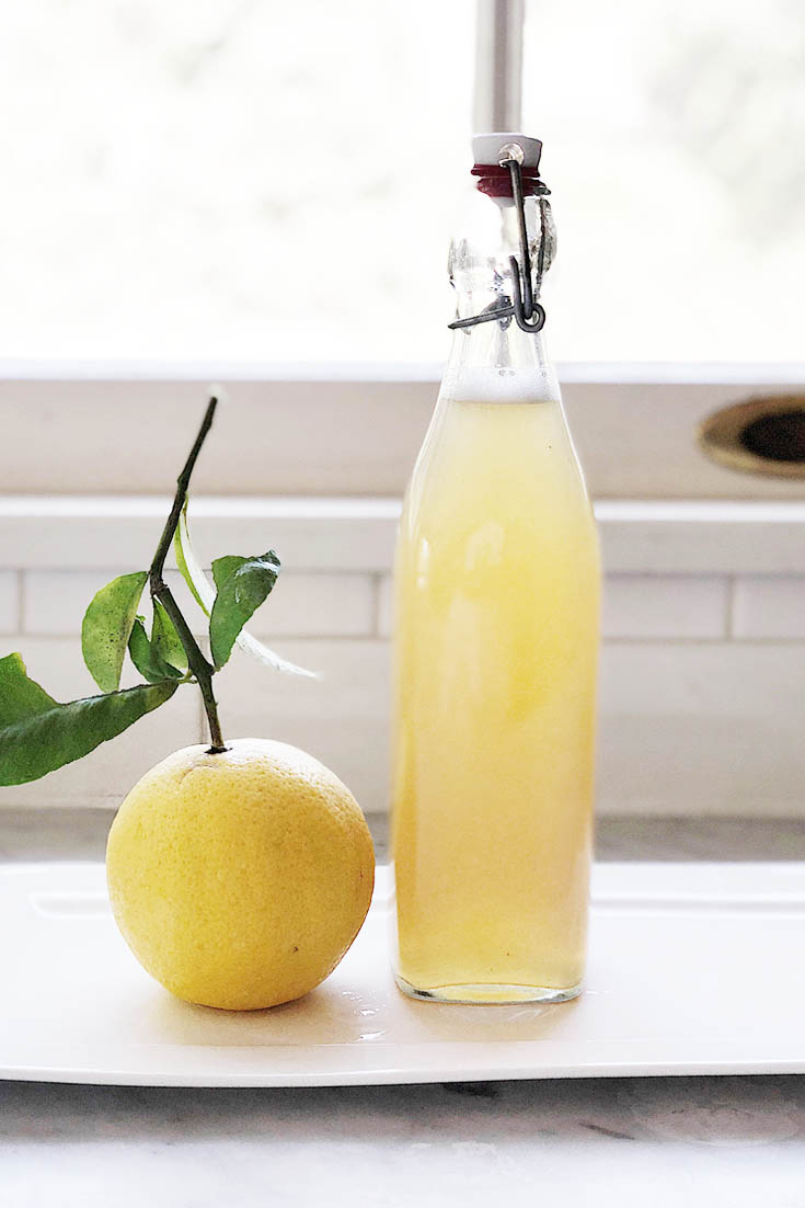 Summer Sips with Meyer Lemons. Here are 10 Non-Alcohol Summer Drinks that you'll love. Need some recipes this summer, well, we have you covered if you need slushies, teas, fruit drinks and more. These bloggers have tested them, and these are their favorites. #drinks #summerdrinks #cocktail #drinkrecipes #recipes #happyhour #weddings #weddingdrinks